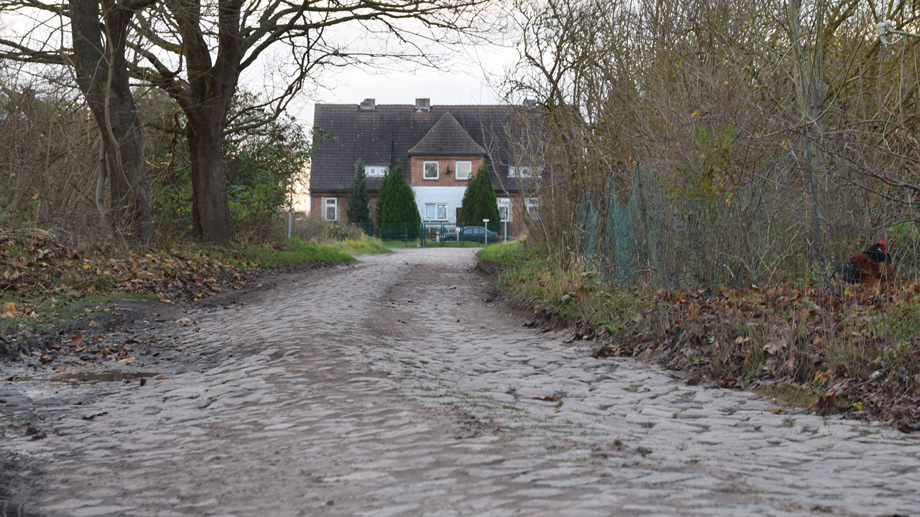 Ahornweg in Leist 1